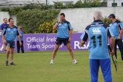 Leinster Rugby v Ireland Cricket 10