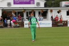 Leinster Rugby v Ireland Cricket 12