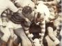 Monkstown USA Tour 1976